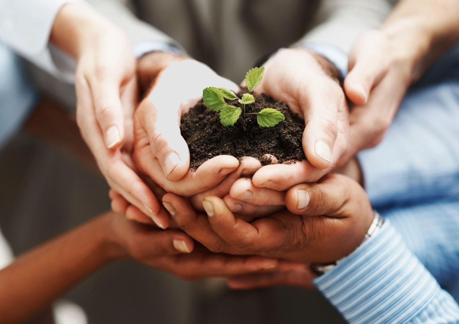6 smart ways to grow your business